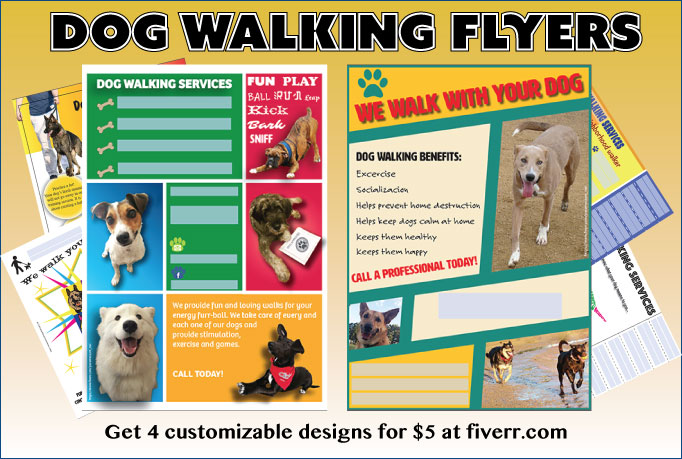 dog walking flyer designs