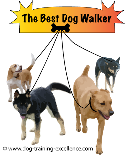 how to grow a dog training business