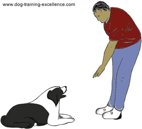 dog training hand signal for down by DTE