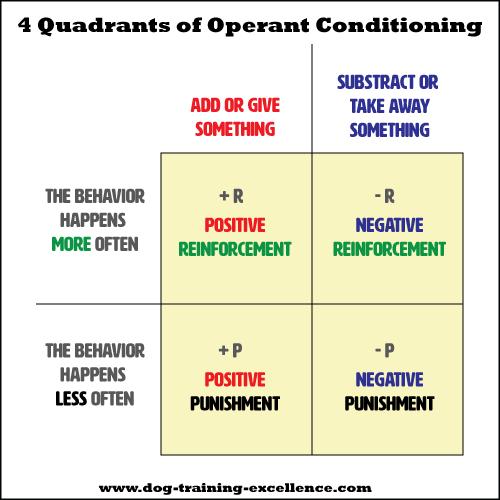 Operant conditioning quadrants
