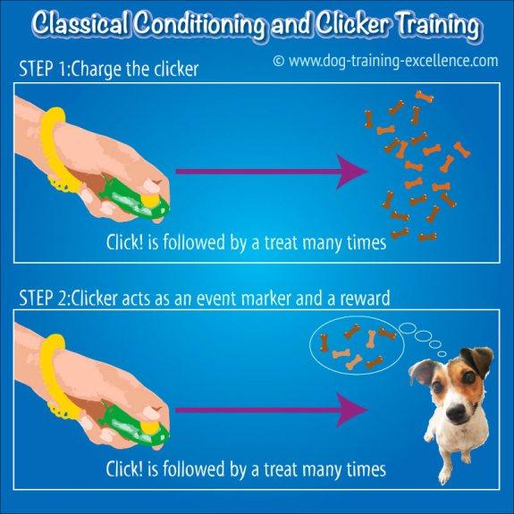 I Click Dog Training Clicker