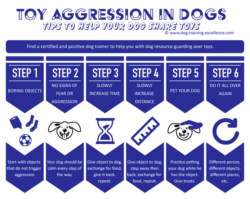 dog aggression over toys