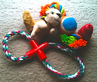 Dog Toys by Dog Training Excellence