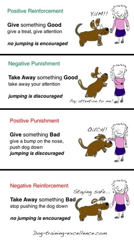 Dog Training Hand Signals - A picture instructional guide