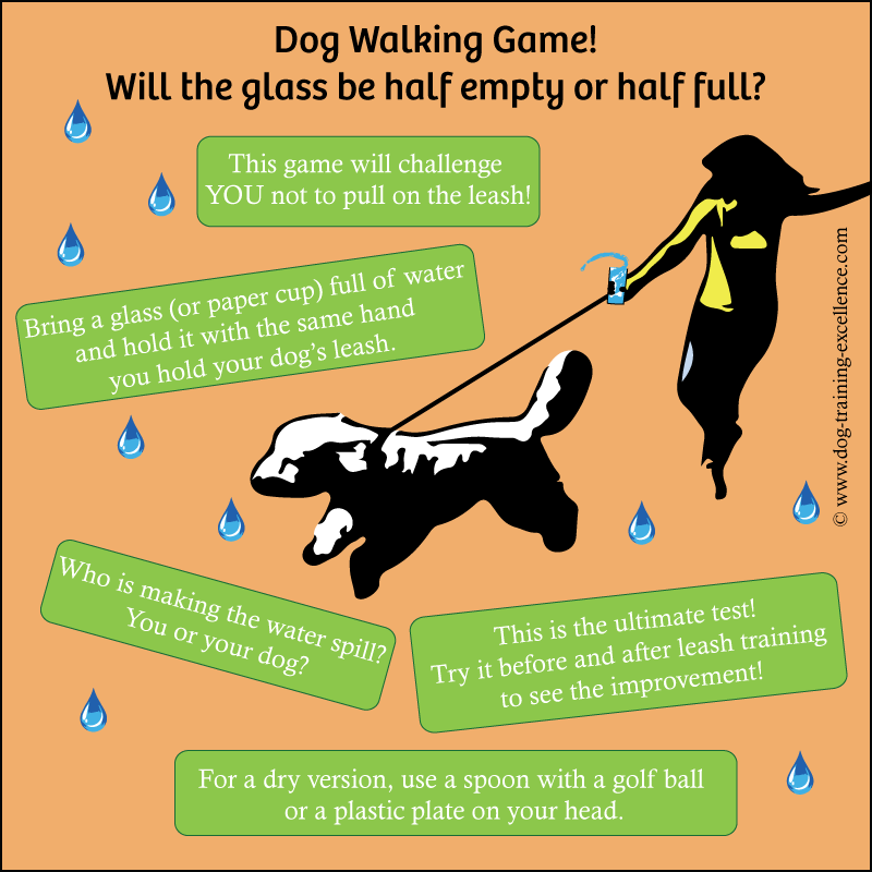 dog walking games, leash training your dog