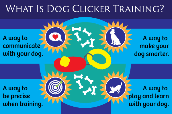 dog clicker training dog training with a clicker