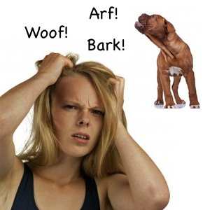 dog barking causes you stress (photo credits Martina Osmy and Viorel Sima)