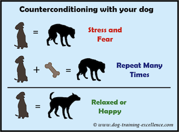 counterconditioning with your dog