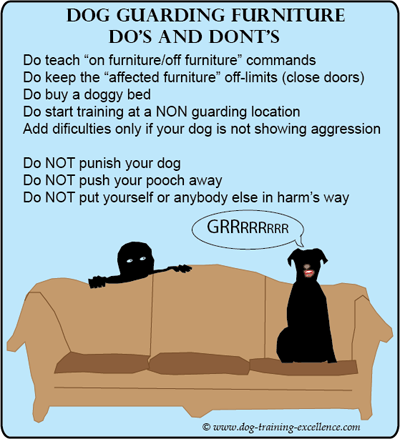 Dog guarding furniture-dog aggression