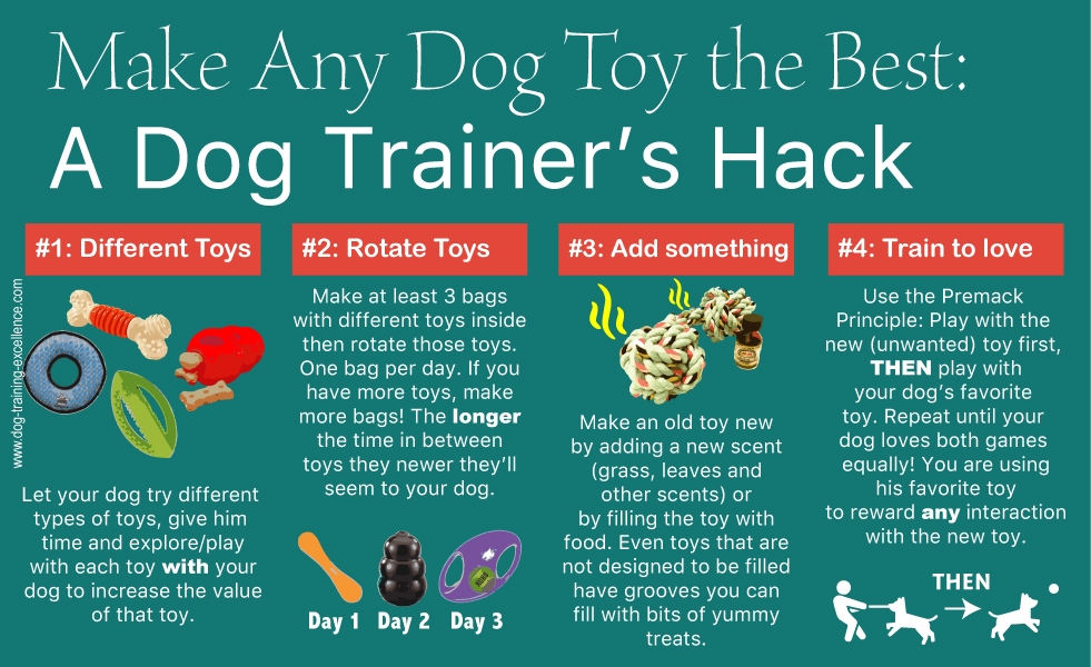 best dog toys, dog training, dog squeaky toys, dog chew toys, durable dog toys, indestructible dog toys