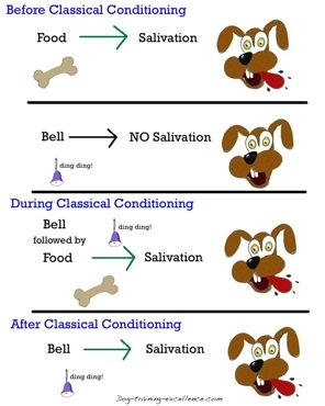 Dog training and classical conditionin