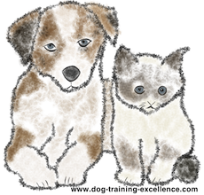 Cute cat and dog cartoon, difference between dogs and cats