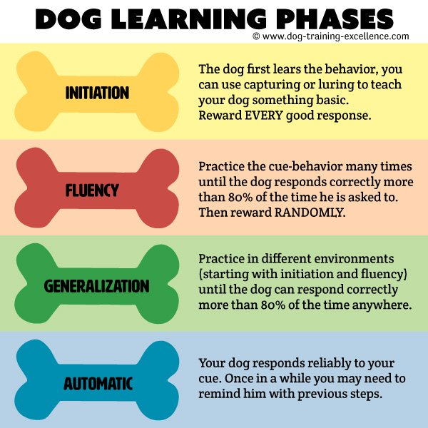 Reliable dog training command