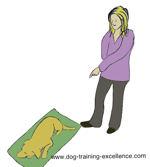 dog training hand signal go to your mat by DTE