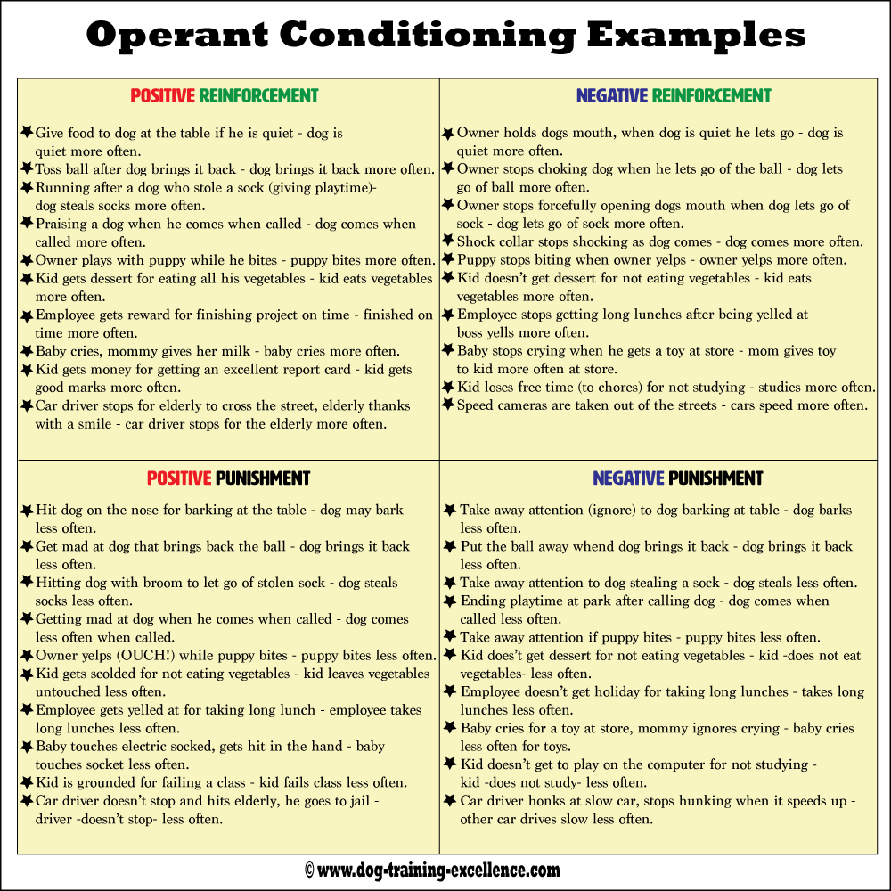 Operant Conditioning, using positive vs. negative dog ...