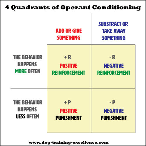 Operant conditioning quadrants