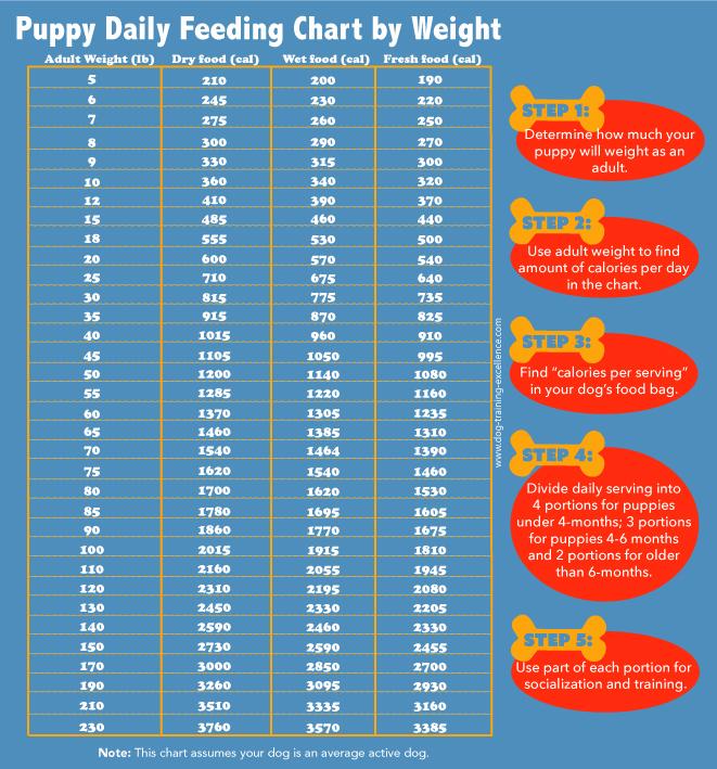 puppy feeding chart by weight, puppy feeding schedule