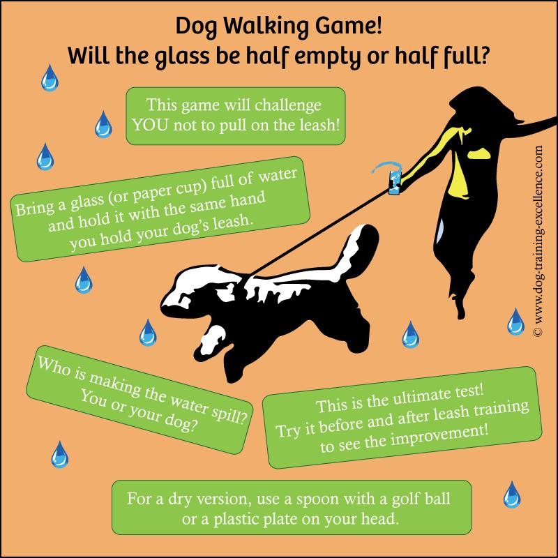 dog walking games, leash training your dog